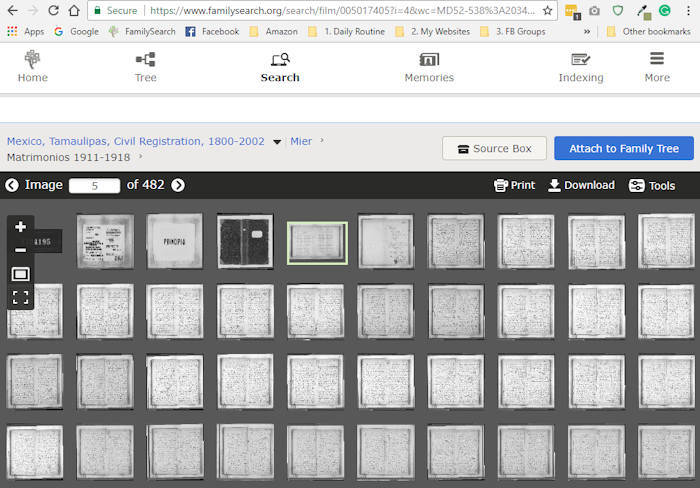 Thumbnail view at FamilySearch of Mexico's Civil Registration Records